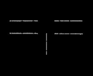 Systeem Perilex